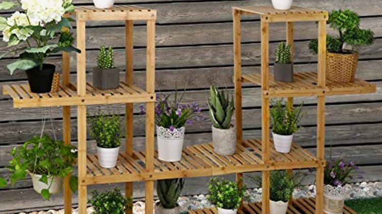 Genius Ways To Water Plants On High Shelves